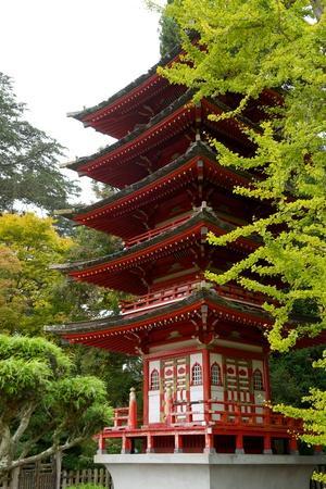 A Japanese Pagoda in the Japanese Tea Garden, the Oldest Public Japanese Garden in the U.S.