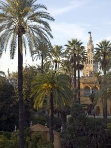 Alcazar Palace Gardens with the Giralda Tower in Background by Krista Rossow