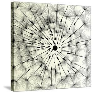 Abstract Dandelion Illustration Spring Concept by Kristaps Eberlins