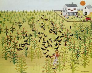 Bird Field by Kristin Nelson