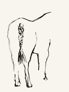 Braided Tail by Kristine Hegre