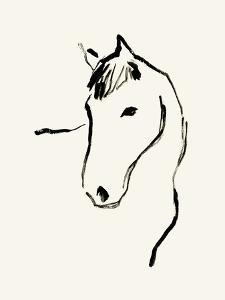 Equine Lines by Kristine Hegre