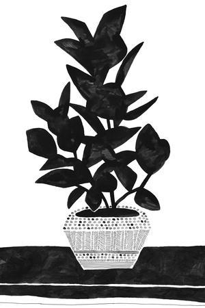 Namsos - Planted