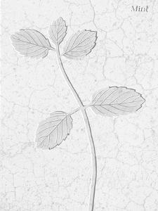 Pressed Plaques - Mint by Kristine Hegre
