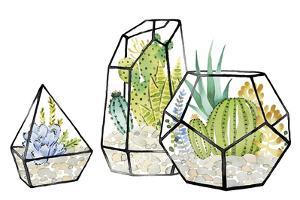 Succulent Trio by Kristine Hegre
