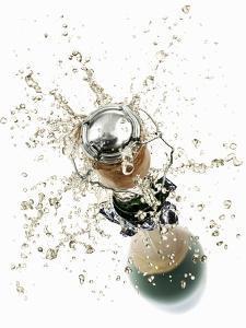 Cork Flying Out of a Sparkling Wine Bottle by Kröger & Gross