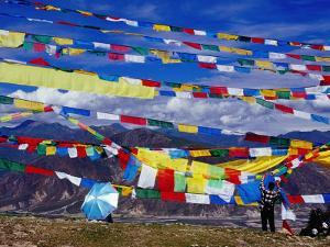 Pilgrim Stringing Up Prayer Flags with Mountains in Background by Krzysztof Dydynski