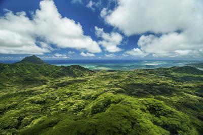 Kualoa Jungles-Cameron Brooks-Photographic Print