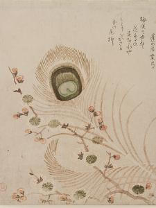 Plum Branch and Peacock Feathers, Mid to Late 1810s by Kubo Shumman