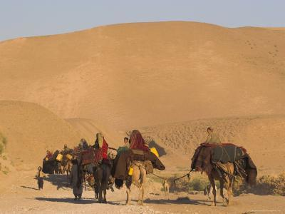 Kuchie Nomad Camel Train, Between Chakhcharan and Jam, Afghanistan, Asia-Jane Sweeney-Photographic Print