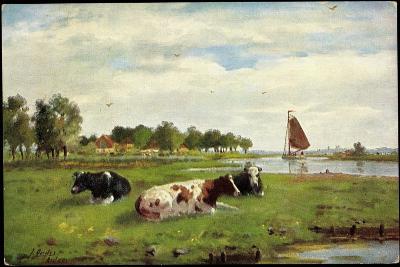 Künstler Kühe Auf Der Wiese Am Flussrand, Segelboot--Giclee Print