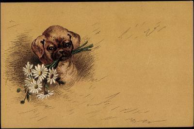 Künstler Litho Kleiner Hundewelpe Mit Blumenstrauß--Giclee Print