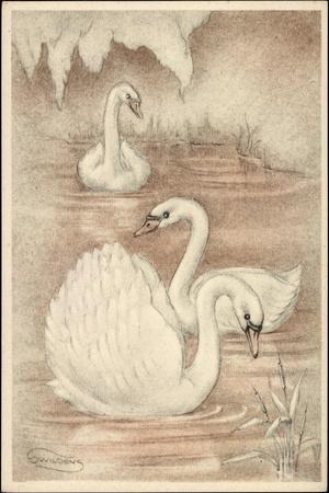 https://imgc.artprintimages.com/img/print/kuenstler-swildens-drei-schwaene-auf-dem-wasser-schwimmend_u-l-poobu10.jpg?p=0