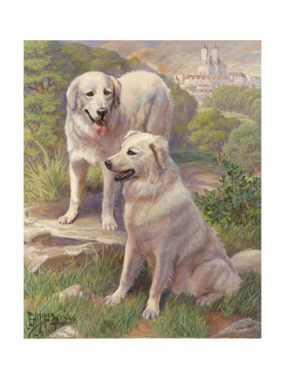 Kuvasz Dogs are Used as Watchdogs--Photographic Print