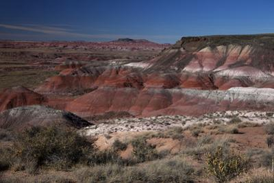 Pintado Point at Painted Desert, Part of the Petrified Forest National Park by Kymri Wilt