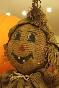 USA, California, Del Mar. A scarecrow at a Pumpkin Patch festival. by Kymri Wilt