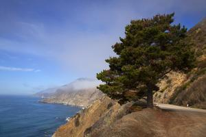 USA, California. Scenic Viewpoint of Pacific Coast Highway 1 by Kymri Wilt