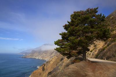 USA, California. Scenic Viewpoint of Pacific Coast Highway 1