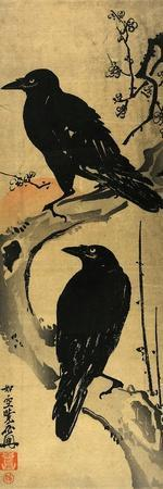 Two Crows on a Plum Branch with Rising Sun