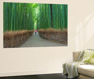 Kyoto Japan 2-Art Wolfe-Wall Mural