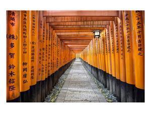 Kyoto Shrine Fushimi Inari Taisha
