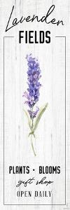 Lavender Fields by Kyra Brown