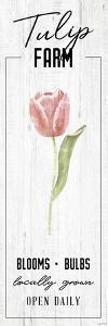 Tulip Farm by Kyra Brown