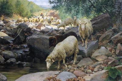 L'Abbeverata Del Gregge Nel Rio Restano (Flock Watering at Restano Stream)-Stefano Bruzzi-Giclee Print