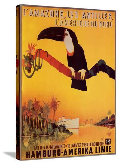 L'Amazone les Antilles-Peter Fussey-Stretched Canvas Print