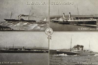 """L and N W Steamships; SS """"Cambria""""--Photographic Print"""