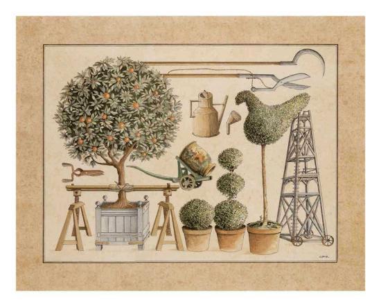L'Art de Former les Topiaires, l'Oranger-Laurence David-Art Print