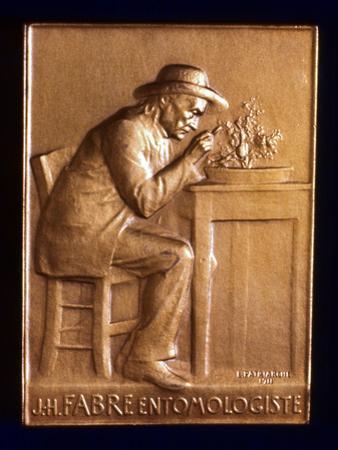 Jean Henri Fabre, French Entomologist, 1911 by L Patriarche