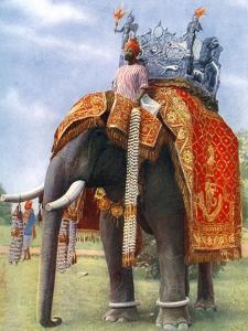 A Majestic Elephant at Bengal's Chief Festive Gathering, India, 1922 by L Reverend Barber