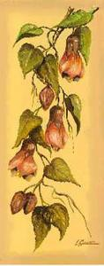 Flores Colgantes II by L. Romero