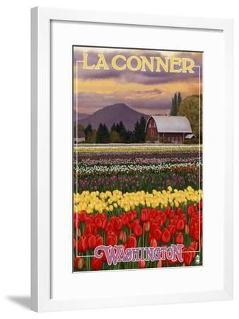 La Conner, Washington - Tulip Fields, c.2009-Lantern Press-Framed Art Print