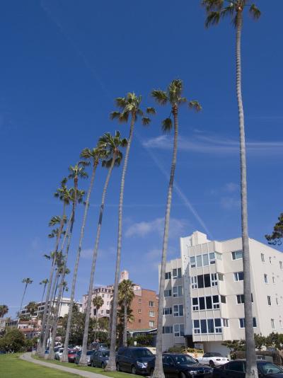 La Jolla, Near San Diego, California, United States of America, North America-Ethel Davies-Photographic Print