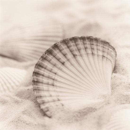 La Mer 3-Alan Blaustein-Photographic Print
