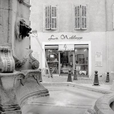 La Noblesse #2-Alan Blaustein-Photographic Print
