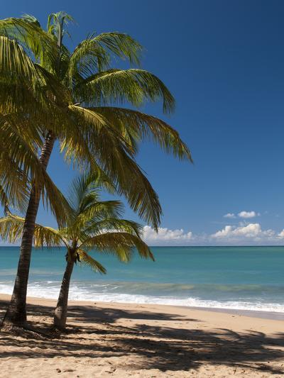 La Perle Beach, Deshaies, Basse-Terre, Guadeloupe, French Caribbean, France, West Indies-Sergio Pitamitz-Photographic Print