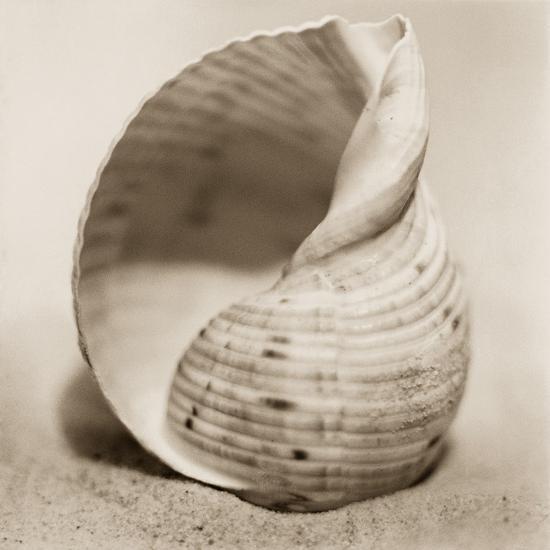 La Playa No4-Alan Blaustein-Photographic Print