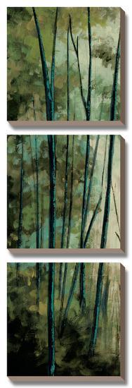 La Senda I-Luis Solis-Canvas Art Set