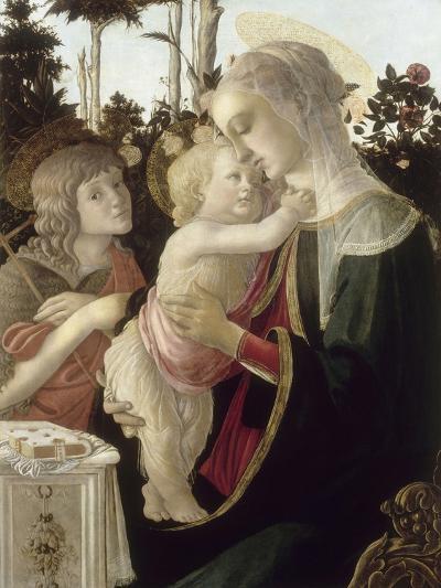 La Vierge et l'Enfant avec Saint Jean-Baptiste enfant-Sandro Botticelli-Giclee Print