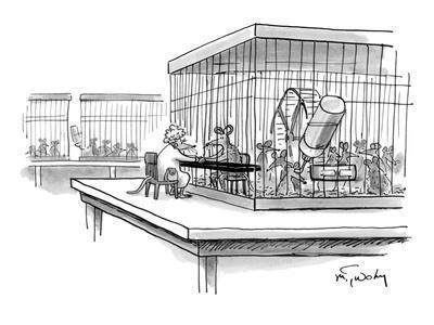 https://imgc.artprintimages.com/img/print/lab-rat-getting-a-prison-visit-from-wife-new-yorker-cartoon_u-l-pgt0820.jpg?p=0