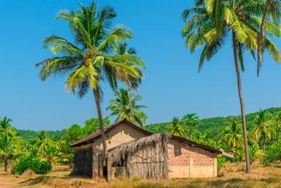 Abandoned Building in A Coconut Grove in the Tropics by Labunskiy K