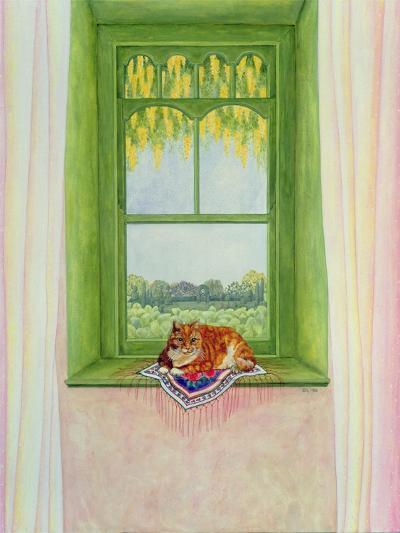 Laburnum Cat-Ditz-Giclee Print