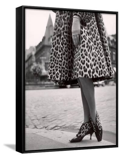 Laced Bootees of Leopard, to Match Coat, Designed by Dior-Paul Schutzer-Framed Canvas Print