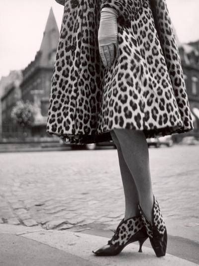 Laced Bootees of Leopard, to Match Coat, Designed by Dior-Paul Schutzer-Photographic Print