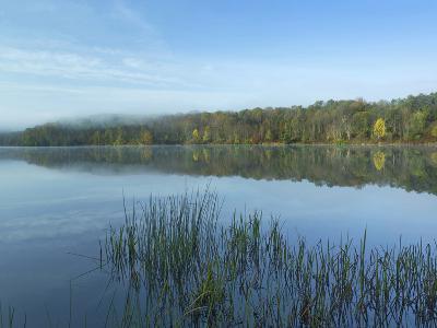 Lackawanna Lake at Bullhead Bay, Lackawanna State Park, Pennsylvania, Usa-Tim Fitzharris-Photographic Print