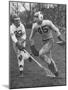Lacrosse Game Between Johns Hopkins and Virginia