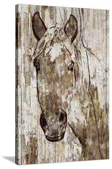 Lady Ann--Stretched Canvas Print